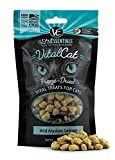 Vital Essentials Cat Freeze-Dried Wild Alaskan Salmon Treats – 1.1 oz. by Vital Essentials