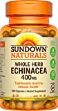 Sundown Naturals® Echinacea Whole Herb 400 mg, 100 Capsules