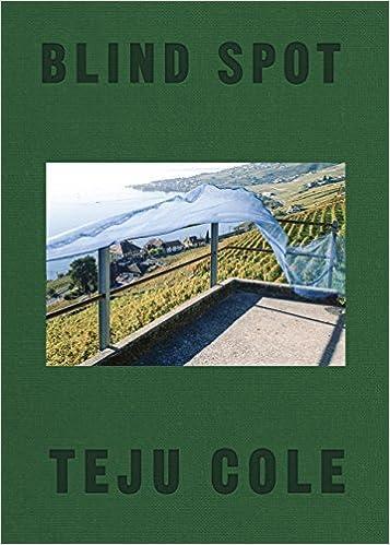 Amazon Fr Blind Spot Teju Cole Siri Hustvedt Livres
