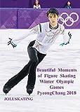 美しき瞬間 平昌冬季オリンピック2018 Beautiful Moments of Figure Skating OlympicGames PyongChang 2018