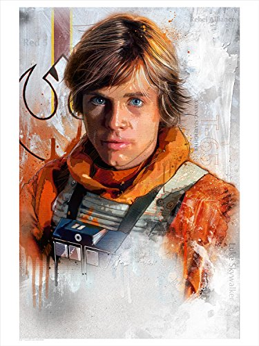 """""""Trust the Force"""" Star Wars Limited Edition Fine Art Lithograph by Steve Anderson"""