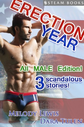 gay erection stories