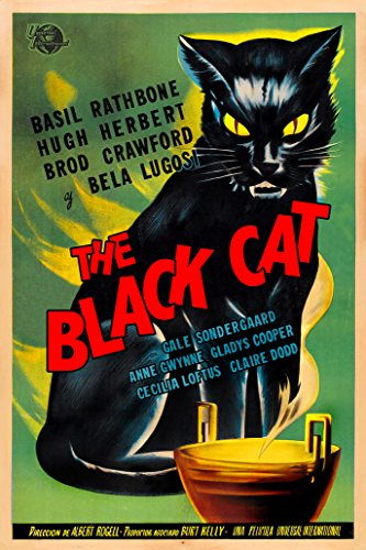 (Digital Fusion Prints The Black Cat Movie Poster (1941) Poster 24