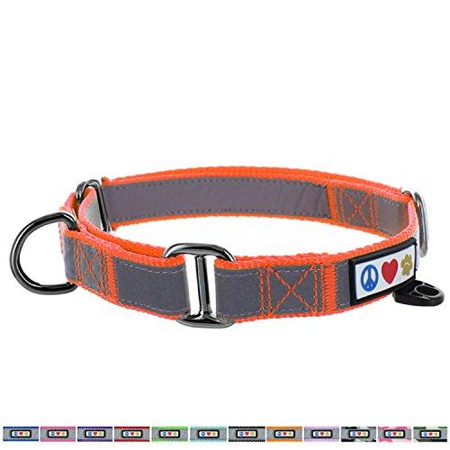 Pawtitas Martingale Dog Collar Puppy Collar Reflective Dog Collar Training Dog Collar Behavioral Dog Collar Small Dog Collar Orange Dog Collar