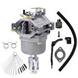 Dosens 799727 Carburetor for 14hp 15hp 16hp 17hp 18hp Briggs & Stratton Carburetor 698620 791886 690194 Carb with Gasket & Carbon Dirt Jet Cleaner Tool Kit
