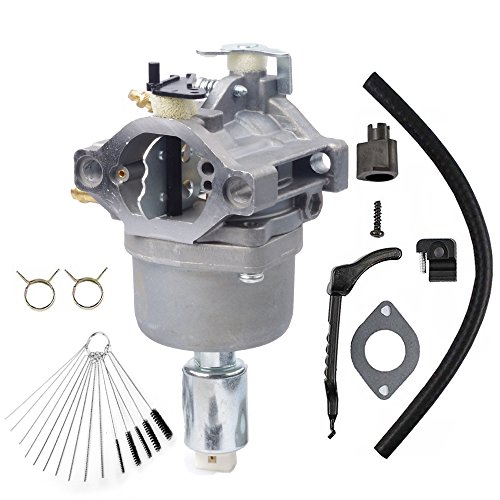 Dosens 799727 Carburetor for 14hp 15hp 16hp 17hp 18hp Briggs & Stratton Carburetor 698620 791886 690194 Carb with Gasket & Carbon Dirt Jet Cleaner Tool Kit by Dosens