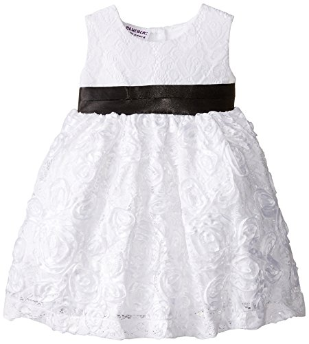 Blueberi Boulevard Baby Girls' SL Lace Overlay Embroidered Dress, White, 12 Months (Boulevard Dress Blueberi)
