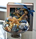 Manu Home Ocean Breeze Potpourri Box~ Perfect Gift for Anyone! Great Idea for Weddings, Birthdays, Housewarming and Gift Baskets OCEAN DECOR with FRESH SCENT ~ Hand Crafted in USA ~