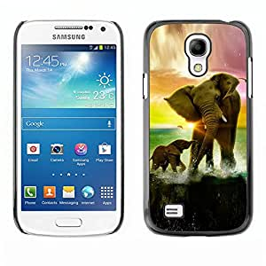 Qstar Arte & diseño plástico duro Fundas Cover Cubre Hard Case Cover para SAMSUNG Galaxy S4 mini VERSION! / i9190 / i9192 ( Elephant Sunset Ocean Sun Summer Africa)