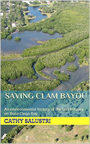 Bay Boca (Saving Clam Bayou: An environmental history of the last estuary on Boca Ciega Bay)