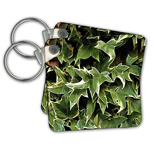 - Taiche - Acrylic Painting - Ivy Leaves - Variegated Ivy - Key Chains - set of 2 Key Chains (kc_299380_1)