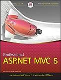 Professional ASP.NET MVC 5 (WROX)