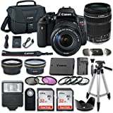 Canon EOS Rebel T6i 24.2 MP Digital SLR Camera Bundle with Canon EF-S 18-135mm f/3.5-5.6 IS STM Lens + 2pc SanDisk 32GB Memory Cards + Accessory Kit