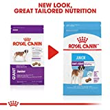 Royal Canin Giant Junior Dry Puppy Food, 6