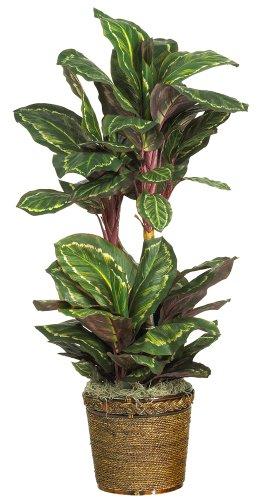 Nearly Natural 6591-03 Maranta Decorative Silk Plant, 45-Inch, Green