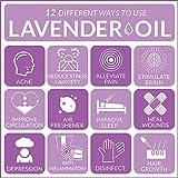 ArtNaturals 100% Pure Lavender Essential Oil
