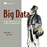 Big Data: Principles and Best Practices of Scalable