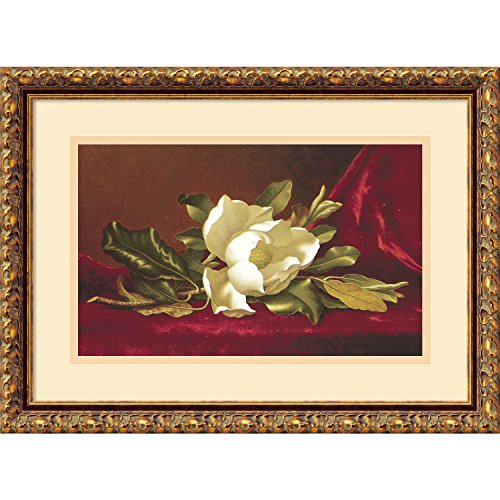 Martin Johnson Heade Magnolia (Framed Art Print, The Magnolia Flower' by Martin Johnson Heade: Outer Size 19 x 14)