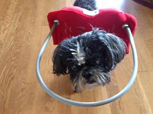 Muffin's Halo Guide For Blind Dogs - Angel Wing Red L
