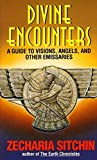 Divine Encounters: A Guide to Visions, Angels, and Other Emissaries (Avon New Age)