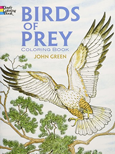 Birds of Prey Coloring Book Audubon Birds Stained Glass