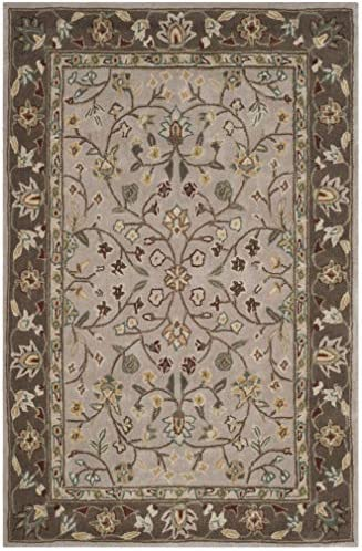 Safavieh Total Perform Collection TLP722B Hand-Hooked Ivory and Taupe Area Rug 8' x 10'