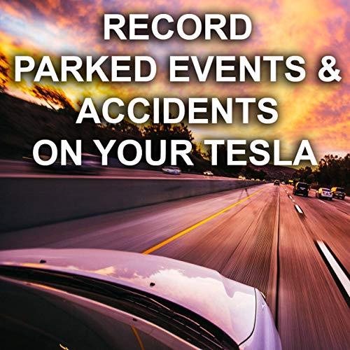 Tesla Model 3 / S/X/Y USB Drive 256 GB Formatted for Tesla ...