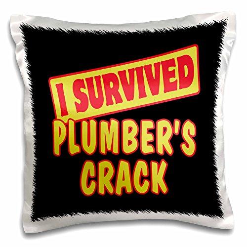 plumbers crack cover - 4