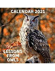 Lessons From Owls Calendar 2021: November 2020 - December 2021 Square Photo Book Monthly Planner Calendar With Owl Inspirational Quotes