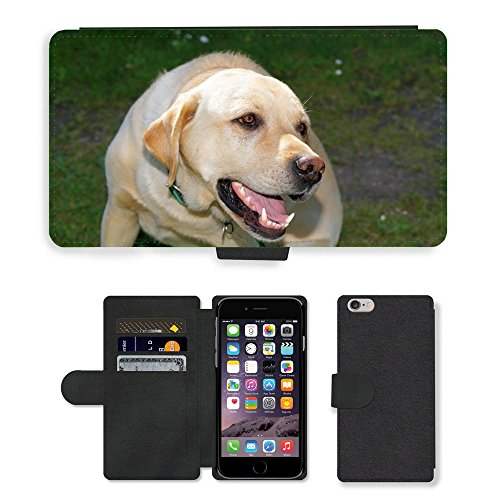 Just Phone Cases PU Leather Flip Custodia Protettiva Case Cover per // M00128134 Chien Labrador Homme Animal Blanc // Apple iPhone 6 PLUS 5.5""