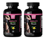 fertility supplements for older women - FERTILITY NATURAL FORMULA - FOR WOMEN'S ONLY - folic acid vitamins for women - 2 Bottles 240 Capsules