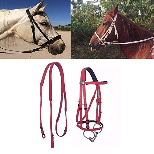 WXH Mustang Breaking Bitless Bridle with/Reins, PVC Material Cold and Heat Resistant Soft Skin Not Grinding Hand, Riding Equestrian Supplies,Red