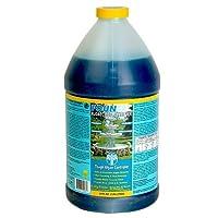 EasyCare 50064 FounTec Algaecide and Clarifier, 64 oz. Bottle