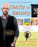 Catify to Satisfy: Simple Solutions for Creating