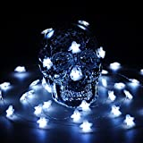 Halloween LED String Lights, Impress Life Ghost String Lights 40 Cold White LEDs 10 ft Copper Wire with Remote Timer for Indoor, Covered Outdoor, Cosplay, Halloween Parties, Bedroom, Home Decorations