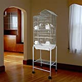 2 Color, NEW Large Tall Canary Parakeet Cockatiel LoveBird Finch Roof Top Bird Cage With StandWhite (White)