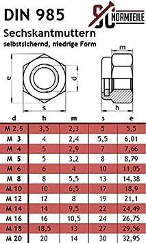 Edelstahl A2 - SC603//SC985 Flachrundschrauben//Schlossschrauben mit Sicherungsmuttern 5 St/ück V2A - M5x60 - - Vollgewinde DIN 603//DIN 985 Stoppmuttern