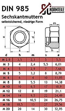 10 St/ück Flachrundschrauben Sicherungsmuttern M8x60 Edelstahl A2 Schlo/ßschrauben u