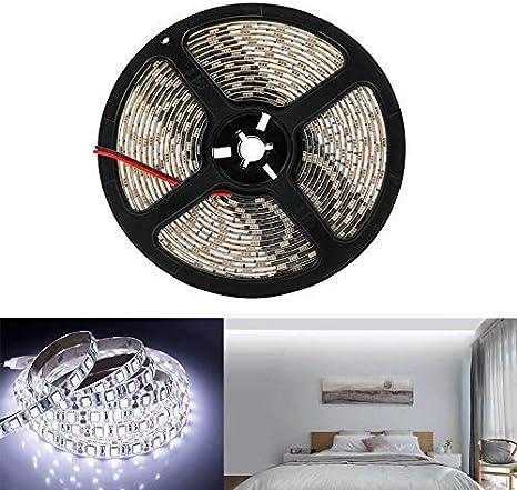 Arotelicht Tira de luces LED 5050 SMD, 5 m, 300 ledes, 12 V, 60 ledes/m, luz blanca fría, solo 5 m, IP65