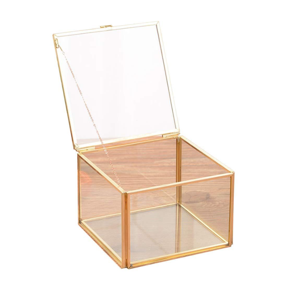 Geometric Micro Landscape Plant Glass Flower Room European Creative Polygon Jewelry Storage Box (Square)