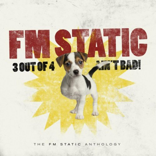 FM Static - 3 Out of 4 Ain't Bad (2010)