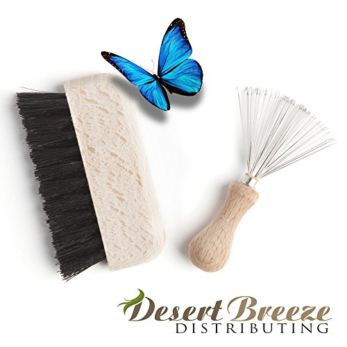 Hair Brush and Comb Cleaner, Rake and Scrub Brush, Cleaning Kit, Beech Wood Handles, Made in Germany ()