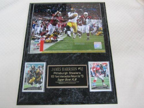 James Harrison Pittsburgh Steelers SUPER BOWL TOUCHDOWN 2 Card Collector Plaque w/8x10 Photo!