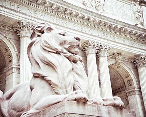 New York City Public Library Photograph lion photo Architecture photography 8x10 inch Print ()