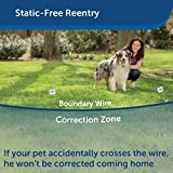 PetSafe YardMax Rechargeable In-Ground Fence for