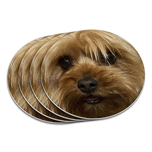 Yorkshire Terrier Yorkie Dog Coaster - Terrier Yorkshire Coaster