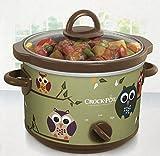 Kitchen & Housewares : Owl Sage Green Classic Crock Pot Slow Cooker 2.5 Quart