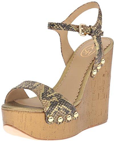 Ant Sneaker 9 EU Women's Black M Biba US 39 Gold Fashion ASH qxtZAvwxO