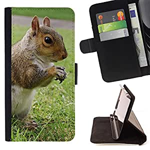 King Air - Premium PU Leather Wallet Case with Card Slots, Cash Compartment and Detachable Wrist Strap FOR Samsung Galaxy G360 G3608 G3606- Squirrel