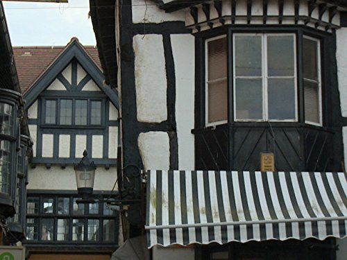 Hidden Killers of the Tudor Home